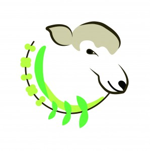 Sheep with grass and ragweed (Eddy Ridge Grassland Logo)